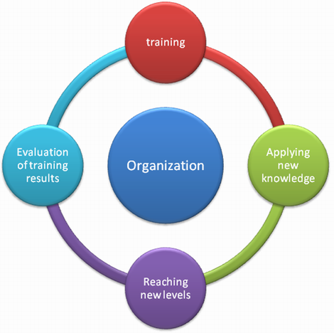 Training evaluation and implementation cycle